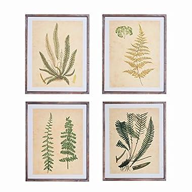 NIKKY HOME Vintage Four 11x14 Inch Framed Wall Decor with Fern Botanical Art Prints, Set of 4 - Framed