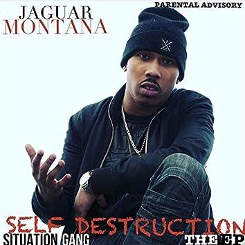 Self Destruction (The EP)