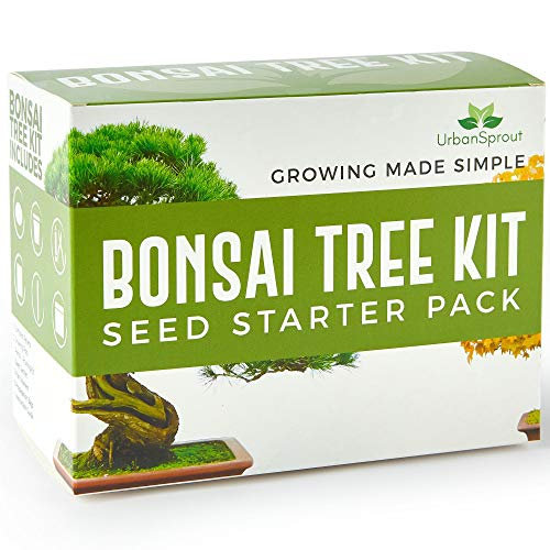 Urban Sprout Bonsai Tree Kit - Grow Your Own Bonsai Trees from Seed - Sustainable Eco Gardening Gift Set with 5 Bonzai Seed Varieties and Bonzie Starter kit Tools