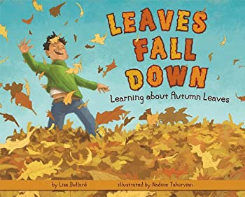 Best leaf fall down Reviews