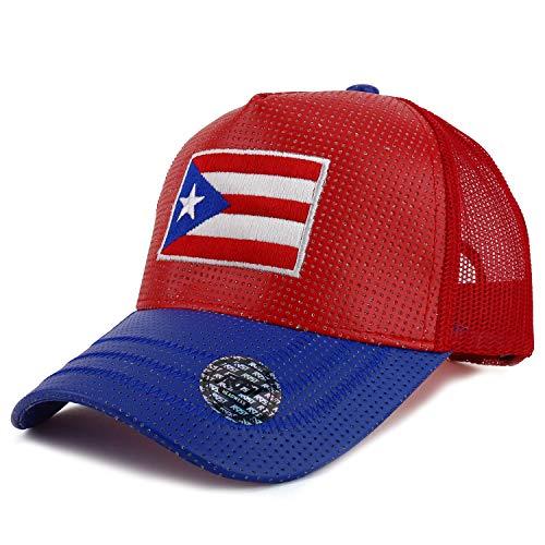 Trendy Apparel Shop Puerto Rico Flag Embroidered PU Trucker Mesh Back Cap