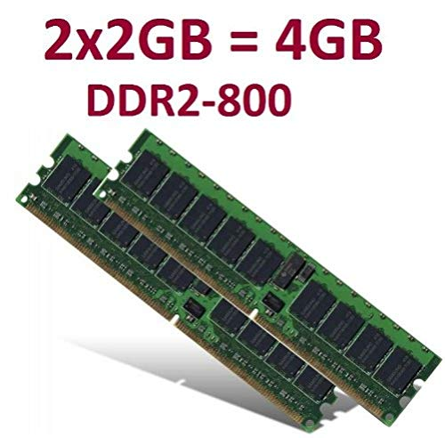 Kit de Memoria de Doble Canal (2X 2 GB, 4 GB en Total, 240 contactos, Dimm DDR2-800 (800 MHz, PC2-6400), 128Mx8x16 de Doble Cara, 100% Compatible con DDR2-667 PC2-5300 y DDR2-533 PC2-4200)