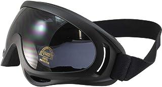 Birdz Flycatcher Goggles Black Frame Smoke Lens