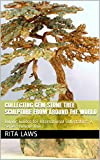 Collecting Gem Stone Tree Sculpture from Around the World: Buying Guides for International Collectables, A Series: Volume One (English Edition)