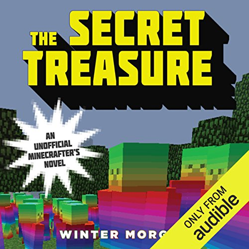 The Secret Treasure audiobook cover art