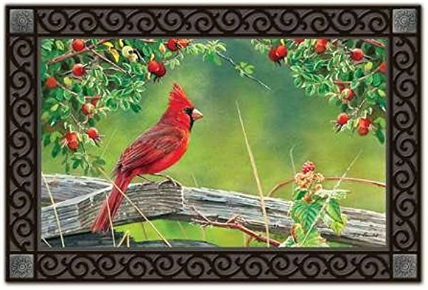 Magnet Works MAIL11293 Cardinal Lookout Matmate