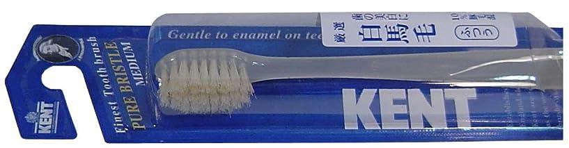 加速するジェットKENT 白馬毛歯ブラシ コンパクトヘッド ふつう KNT-1232 ×8個セット