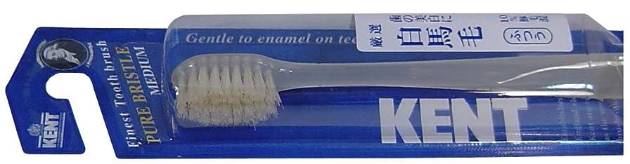 取り壊す告白塩辛いKENT 白馬毛歯ブラシ コンパクトヘッド ふつう KNT-1232 ×3個セット
