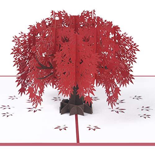 Vicloon Tarjetas de Felicitación, Tarjeta de San Valentín con Sobre, Tarjeta de Felicitación Pop Up 3D, Tarjeta de Regalo de Regalo, Hoja de Arce Romántica Tarjeta Tarjeta de Agradecimiento