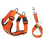 Nasjac Juego de Cinturones de Seguridad para Perros, cinturón de Seguridad para Mascotas con cinturón de Seguridad (S, Naranja(Arnés y Cinturón))