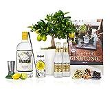 Set Regalo Gin Tonic Premium con Limonero 38 cm maceta 16 cm, guía de cuidados, ginebra ecológica, cuchara cocktail, estuche 3 botánicos, 2 tónicas, medidor y libro recetas en caja de regalo