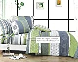 Swanson Beddings Serene 100% Cotton Sheet Set: Fitted Sheet, Flat Sheet and Two Matching Pillowcases (California King)