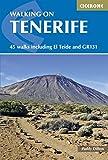 Walking on Tenerife: 45 walks including El Teide and GR131 (Cicerone Guide) (English Edition)