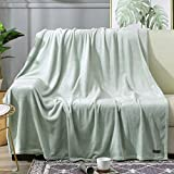 BEAUTEX Fleece Throw Blanket for Couch Sofa or Bed Throw Size, Soft Fuzzy Plush Blanket, Luxury Flannel Lap Blanket, Super Cozy and Comfy for All Seasons (50' x 60',Mint)