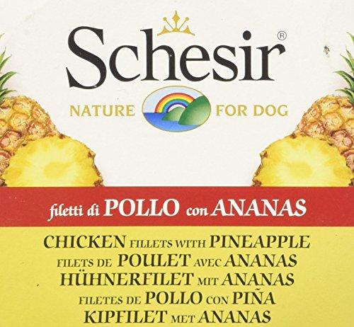 Schesir Perro 150 gr Pollo con piña