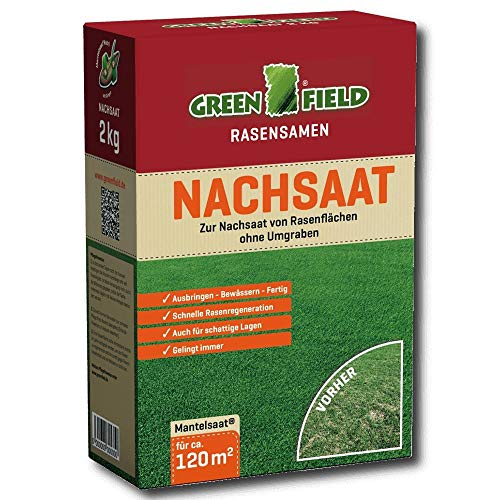 Semence À Gazon Semences Gazon Greenfield 62521 Nachsaat 2 kg pour ca. 120 m 2
