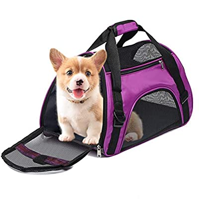 Anyifan Airline Approved Dog and Cat Carrier, Collapsible Soft-Sided Portable Travel Breathable Pet Bag Safety Zippers for Kitten Cat Puppy Dog Car Seat Safe (Large, Purple)