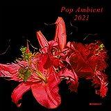 Pop Ambient 2021 Various Artists Cd...