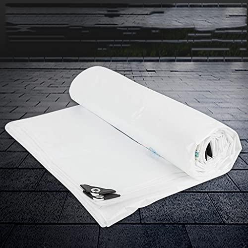 ZLGP Alta Densidad Lona Impermeable,Heavy Plástico PE Carpa,Lona Multiusos,220 G por Metro Cuadrado,Ideal para Toldo Toldo Toldo Carpa Piscina Cubierta,5 * 6m