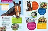 WAS IST WAS Pferde und Ponys: Reiten, Fohlen, Pferdesprache, Turniere, Zucht und Pflegepferd! (WAS IST WAS Edition) - 2