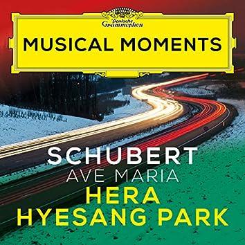 """Schubert: Ellens Gesang III, Op. 52, No. 6, D. 839 """"Ave Maria"""" (Musical Moments)"""
