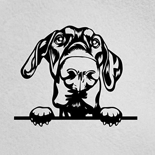 Lplpol - Adhesivo de vinilo antipolvo de alta calidad, diseño de perro Doberman Mom, Doberman Dad, Doberman Dad, Doberman Lover, mascota, perro, amante del perro, vinilo para ventana de coche portátil de 6 pulgadas