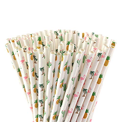 Biodegradable Paper Fiesta Straws