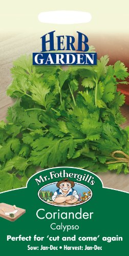 Mr Fothergill?s Seeds Ltd 16213 Herb Seeds, Coriander Calypso