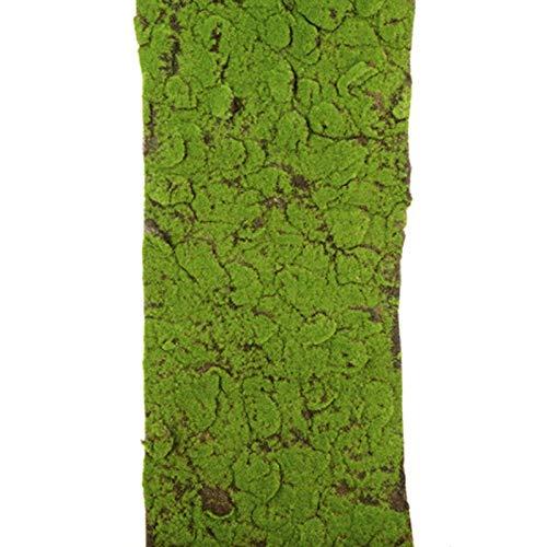 FloristryWarehouse Rouleau de tapis de mousse verte artificielle 40 x 150 cm