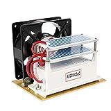 KKmoon 20g / h 220V Générateur d'Ozone Portable, Machine de Désinfection, Épurateur de Filtre à Air, Fan pour Stérilisation de Maison et de Voiture