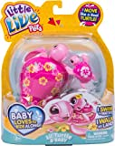 Little Live Pets Turtle Single Pack - Laila, Toys for Girls, 5 Years & Above, Robot Toys for Children, Animal