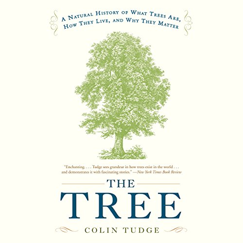 The Tree cover art