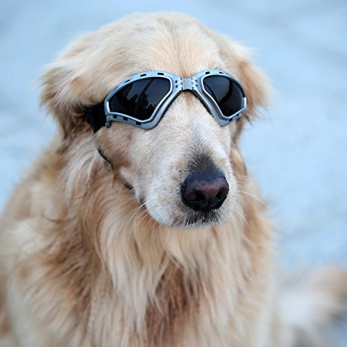 PETLESO Large Dog Goggles Eye Protection Pet Goggles Sunglasses for Medium Large Dogs- Gray