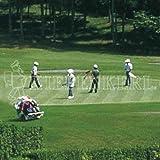 Kiepenkerl RSM DSV 4.4.1 Golfrasen Spielbahn 10kg, Rasensamen, Rasensaat