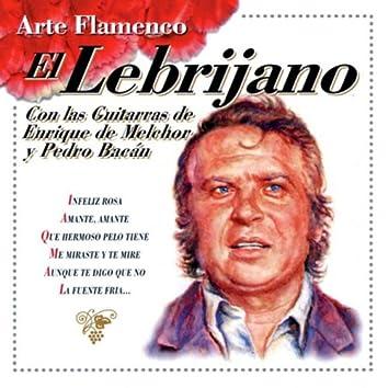 Arte Flamenco : El Lebrijano