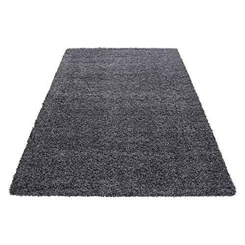 Hochflor Shaggy Teppich für Wohnzimmer Langflor Pflegeleicht Schadsstof geprüft 3 cm Florhöhe Oeko Tex Standarts Teppich, Maße:200x290 cm, Farbe:Grau