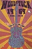 Froy Woodstock Wand Blechschild Retro Eisen Poster Malerei
