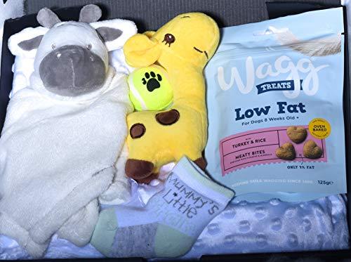 The Little Pup Company Welpe Hund Geschenkbox Welpe Spielzeug Plüsch für kleine Hunde Welpen Leckerlis