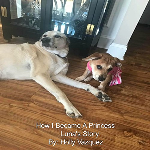 Luna's Story: How I Became a Princess audiobook cover art