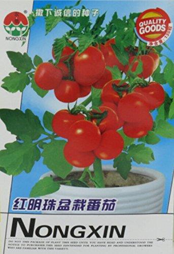 Graines Rare Bright Red Tomate cerise Bonsai bio, 1 Original Pack, 200 graines / Pack, Excellente Bonsai Fruit Indoor # NF623