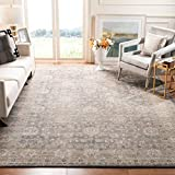Safavieh Sofia Collection SOF330B Vintage Oriental Distressed Non-Shedding Stain Resistant Living Room Bedroom Area Rug, 9' x 12', Light Grey / Beige