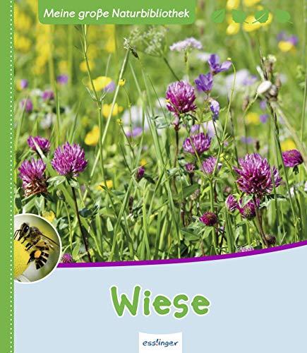 Wiese (Meine große Naturbibliothek)