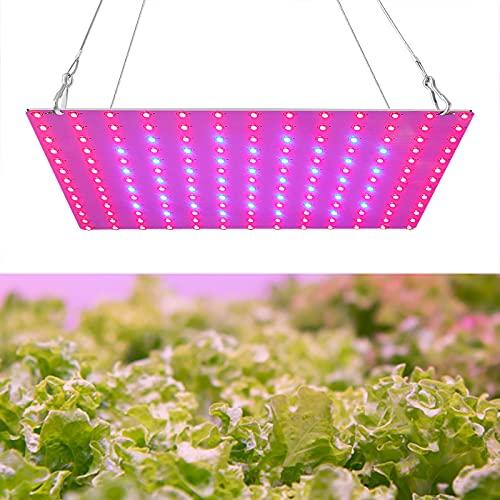 Porcyco Lámpara LED de crecimiento para plantas, espectro rojo y azul, de alto rendimiento, para crecimiento de tiendas de campaña, plantas, verduras y flores