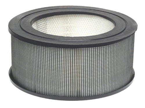 Honeywell 21500 Enviracaire True HEPA Filter,White
