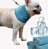 MEISHANG Perros Collar refrigerante, cuello de perro, pañuelo refrigerante para perros, pañuelo refrigerante para el cuello, pañuelo refrigerante para perros, perros