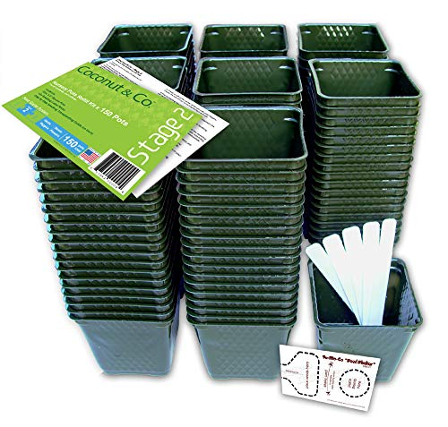 Set of 150 Plastic Nursery Plant Pots, Transplating Guide,