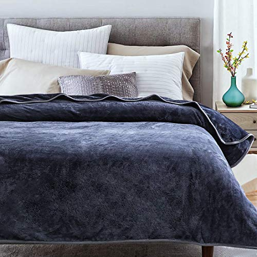 Fraylon Soft Fleece Blanket Queen Size for All Season...