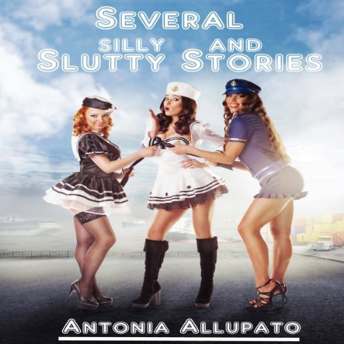 Several Silly and Slutty Stories cover art