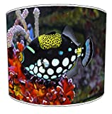Premier Lighting 20cm Marine Aquarium Fish Lampenschirme3 Für eine Deckenleuchte