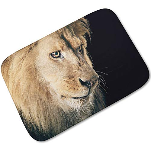 3D Printing Mat Thicken Memory Foam Doormat Outdoor Entrance Floor Mats Kitchen Mat Bedroom Bedside Rugs Bathroom Foot Pad Living Room Floor Rug-20x32 inch